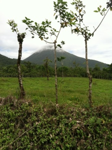 Mt. TTTT